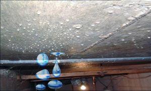 Конденсат на потолке в погребе гаража: причины, следствия и варианты устранения