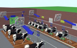 Роль вентиляции в животноводстве: назначение, параметры, варианты