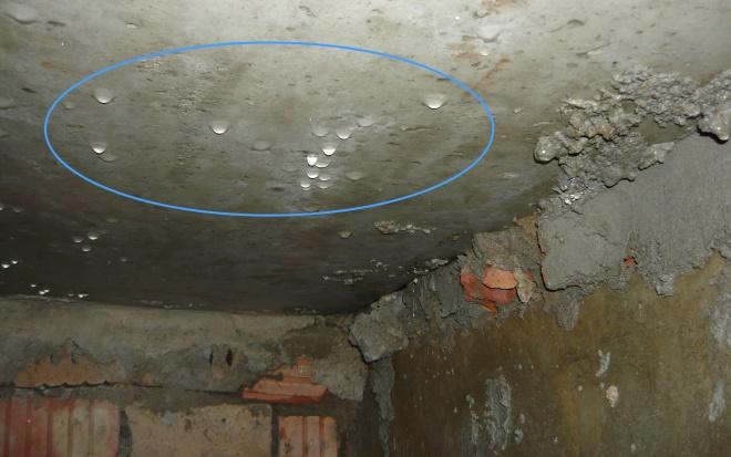 Мокрый потолок погреба при отсутствии вентиляции