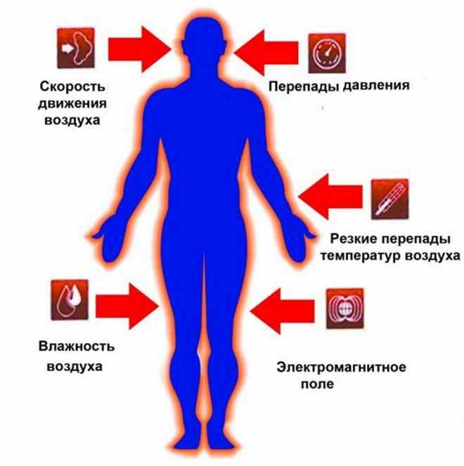 Факторы, влияющие на организм человека